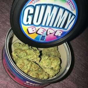 Gummy Bear By Big Smoking Farm