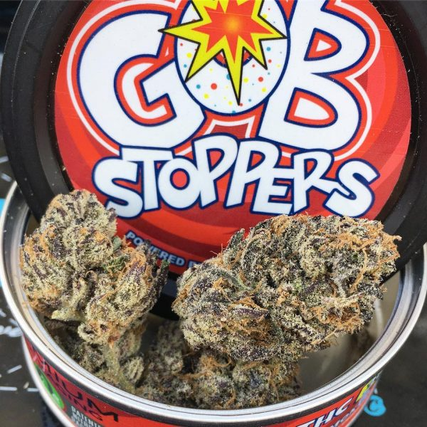 GOB Stoppers